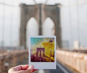 bridge, photography, and photo image