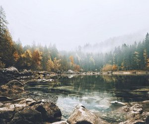 lake, forest, and travel image