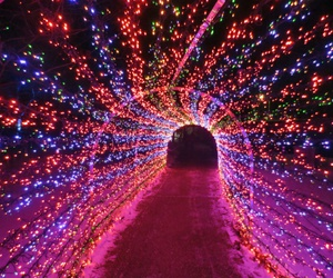 christmas, lights, and magic image