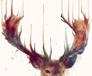 deer, art, and animal image