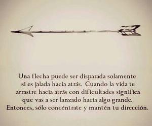 arrow and vida image