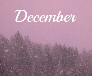 december, pink, and snow image