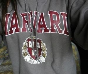 harvard, girl, and sweatshirt image