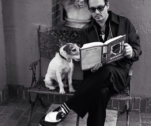 johnny depp, dog, and book image