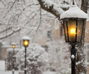 light, park, and snow image