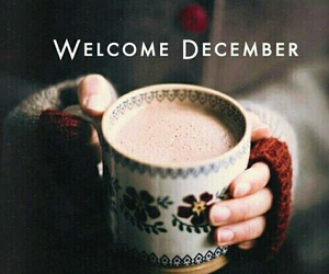 cocoa, december, and new year image