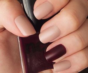 girly, season, and hands image