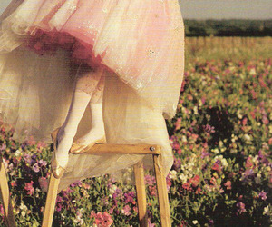 ballet, flowers, and photography image
