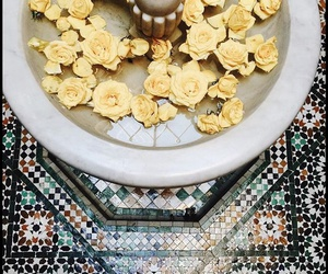 yellow, fountain, and rose image