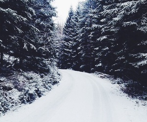 snow, december, and winter image