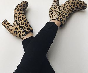 leopard and shoes image