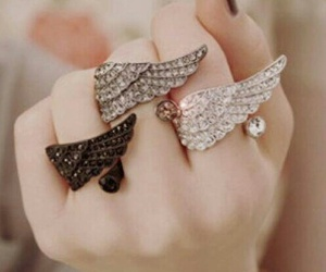 anel, rings, and wings image