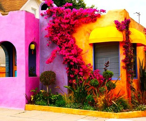 house, colorful, and flowers image