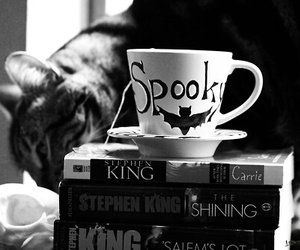 book, cat, and spooky image