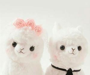 alpaca, cute, and kawaii image