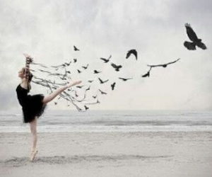 girl bird free fly image