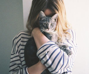 cat, photography, and girl image