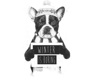 art, dog, and winter image