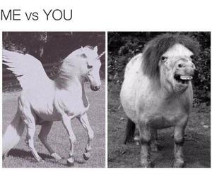 funny, unicorn, and me image
