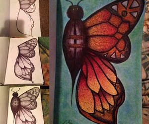 butterfly, drawing, and wreck this journal image