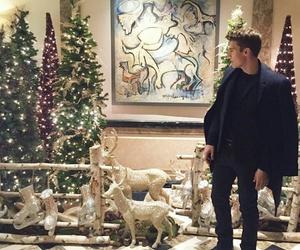 christmas tree, nolan gerard funk, and instagram image