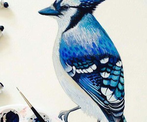 art, aves, and bird image