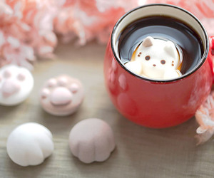 cute, cat, and coffee image