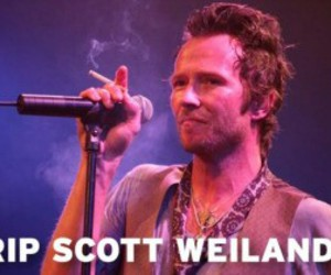 rest in peace, Scott Weiland, and velvet revolver image
