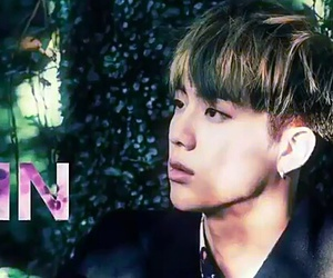 butterfly, run, and jin image