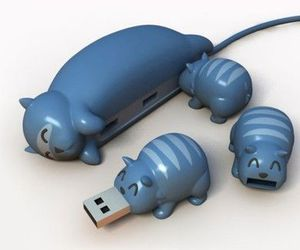 cat and usb image