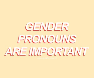 aesthetic and gender pronouns image