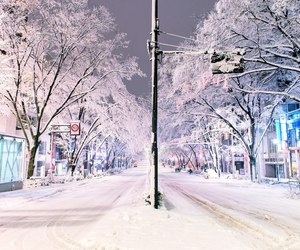winter, snow, and japan image