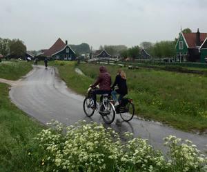 beautiful, bike, and nature image