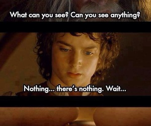 funny, lord of the rings, and lol image