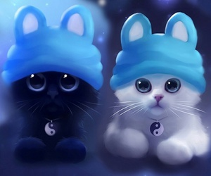 black, cats, and white image
