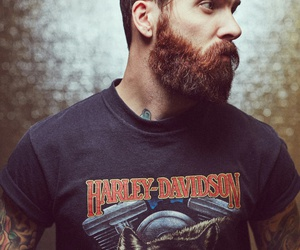 beard, photography, and shirt image