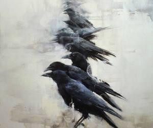 art, birds, and crow image