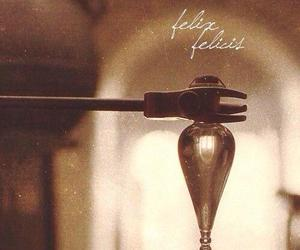 harry potter, hp, and felix felicis image