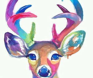 deer, colors, and animal image