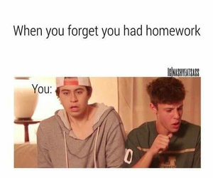 funny, nash grier, and magcon image