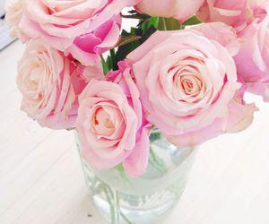 rose, feminine, and flowers image