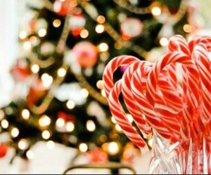 christmas, candy cane, and december image
