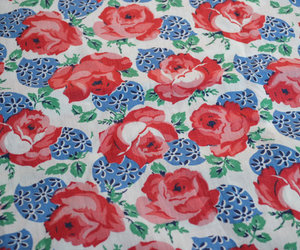 40s, blue, and rose image