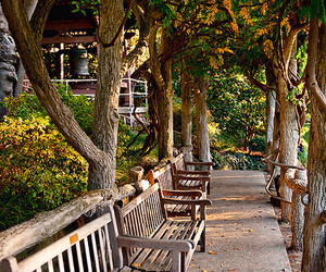 benches, california, and dusk image
