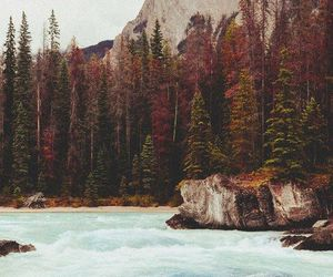 wanderlust, adventure, and lake image