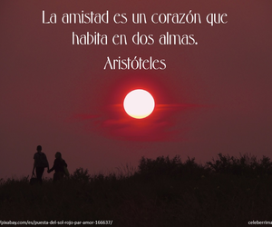 frases, aristoteles, and frases de amistad image