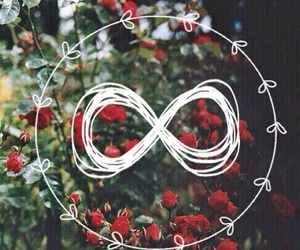 flowers, wallpaper, and infinity image