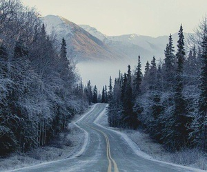 winter, forest, and mountains image