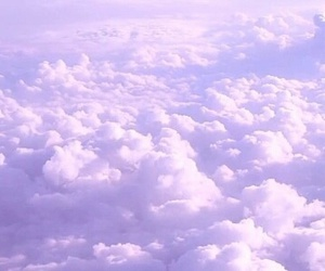 cloud and lavender image