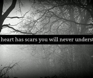 scars, heart, and quotes image